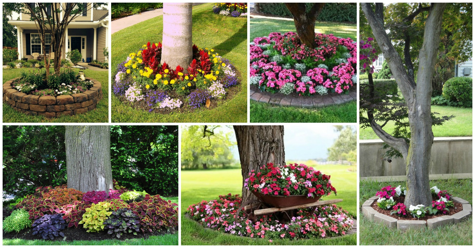 15 beautiful ideas for decorating the landscape around for Landscaping ideas around trees pictures