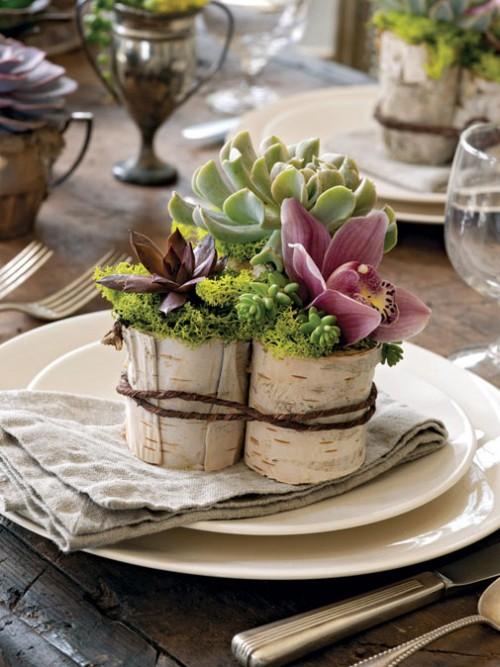 vases-from-tree-stump-6