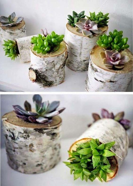 vases-from-tree-stump-7