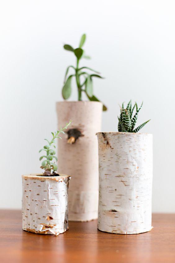vases-from-tree-stump-9