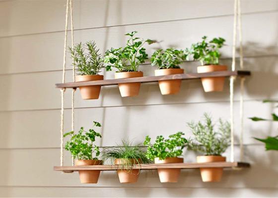 vertical-garden-balcony-3