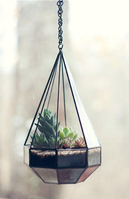 wonderful terrarium 10