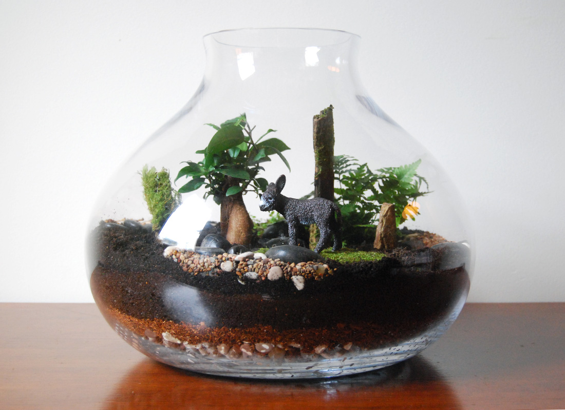 15+ Home Decor With Wonderful Terrarium