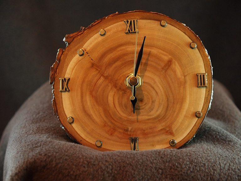 wood-slice-craft-3