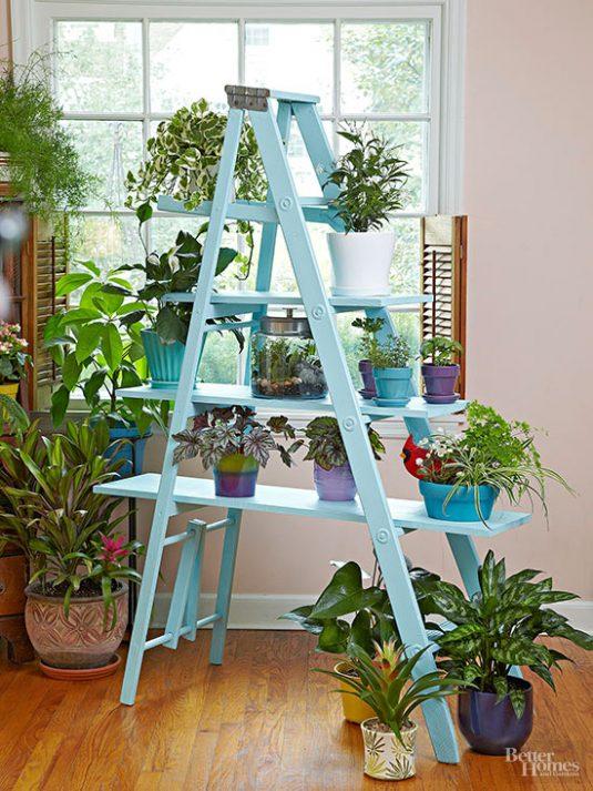 Wooden Ladder Garden 3